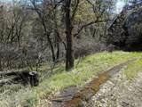 9713 St Helena Drive - Photo 5