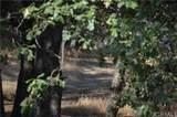 7 Tanglewood Lane - Photo 3