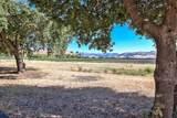 307 Pacheco Creek Lane - Photo 9