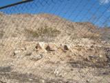 0 Old Mine Road - Photo 1