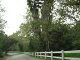 190 Sycamore Lane - Photo 16