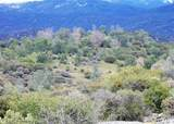 0-41.44 AC Flying O Ranch Trail - Photo 5