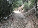 0 Cougar Rock Road - Photo 7