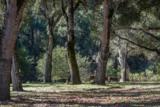 2 Wild Turkey Run - Photo 26