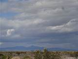 1 South Highway 95 - Photo 13