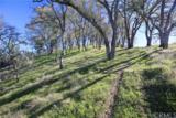 4455 Vista Del Lago - Photo 55