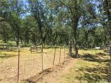 15629 Joseph Trail - Photo 62