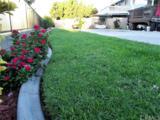 1411 Del Norte Drive - Photo 22