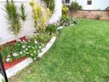 1411 Del Norte Drive - Photo 4