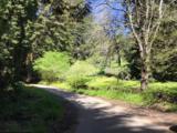 6701 Oak Ridge Road - Photo 38