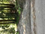 6701 Oak Ridge Road - Photo 39