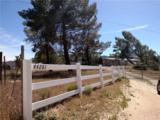 44281 Terwilliger Road - Photo 1