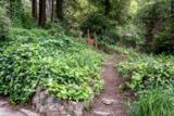 3680 Redwood Drive - Photo 20