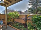37347 Sequoia Road - Photo 10