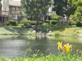 26972 Mill Pond Road - Photo 27