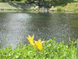 26972 Mill Pond Road - Photo 28