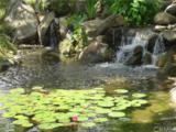 26972 Mill Pond Road - Photo 29