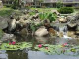 26972 Mill Pond Road - Photo 30