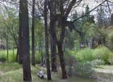 0 Sawpit Creek Road - Photo 1