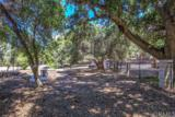 36815 Oak View Road - Photo 41