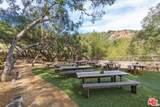 301 Old Topanga Canyon Road - Photo 17