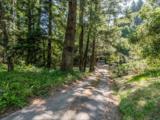 2262 Bean Creek Road - Photo 42