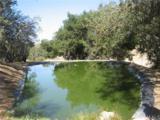 4263 Calf Canyon - Photo 5