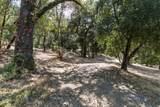 20 Arroyo Sequoia - Photo 16