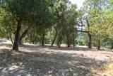 20 Arroyo Sequoia - Photo 17
