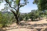 20 Arroyo Sequoia - Photo 20