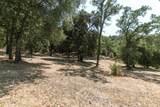 20 Arroyo Sequoia - Photo 24