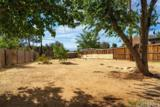38886 Juniper Tree Road - Photo 18