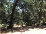 1254 Portillo Lane - Photo 13