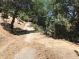 1254 Portillo Lane - Photo 14