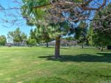 409 Sierra Drive - Photo 69