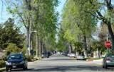 17436 Gilmore Street - Photo 41