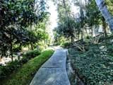3607 Hidden Lane - Photo 50
