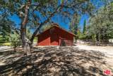 20950 Oak Glen Ave - Photo 12