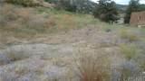 4009 Mt Pinos Way - Photo 2