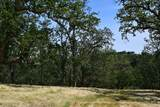 13 Long Ridge Trail - Photo 13