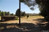 33238 Agua Dulce Canyon Road - Photo 10