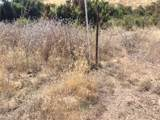 0 Vac/Cor Calling Drt /Basket Road - Photo 2