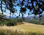 0 East Carmel Valley Road - Photo 22