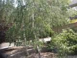 2201 Cypress - Photo 6