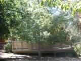 2201 Cypress - Photo 7