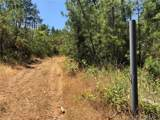 0 Finegold Creek Drive - Photo 4