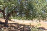 1503 Kaila Marie Way - Photo 2