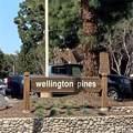 14751 Plaza Drive - Photo 1