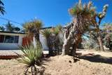 56560 Carlyle Drive - Photo 4