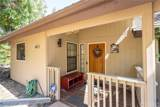 50848 Smoke Tree - Photo 2